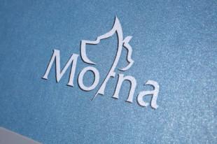 logo_Morna_naslovna2